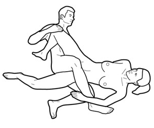 gaya seks bersilang