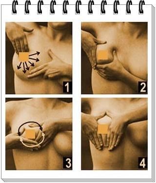 Pijat sendiri payudara dapat mengencangkan buah dada