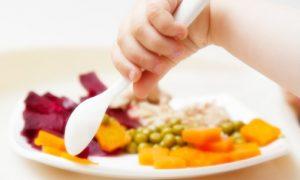 makanan sehat ibu