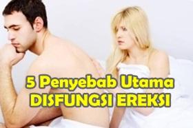 Penyebab disfungsi ereksi